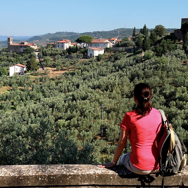 Montalbano colline Lamporecchio