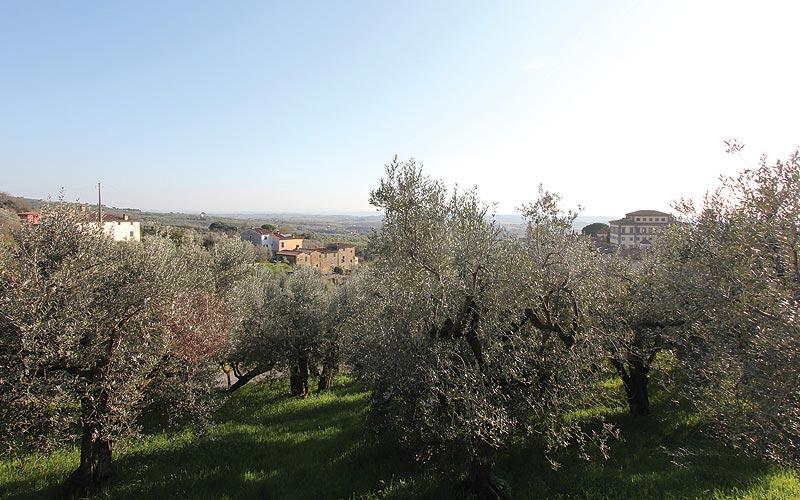 Spicchio Villa Rospigliosi