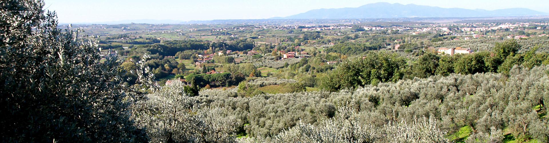 territorio-lamporecchio-Toscana