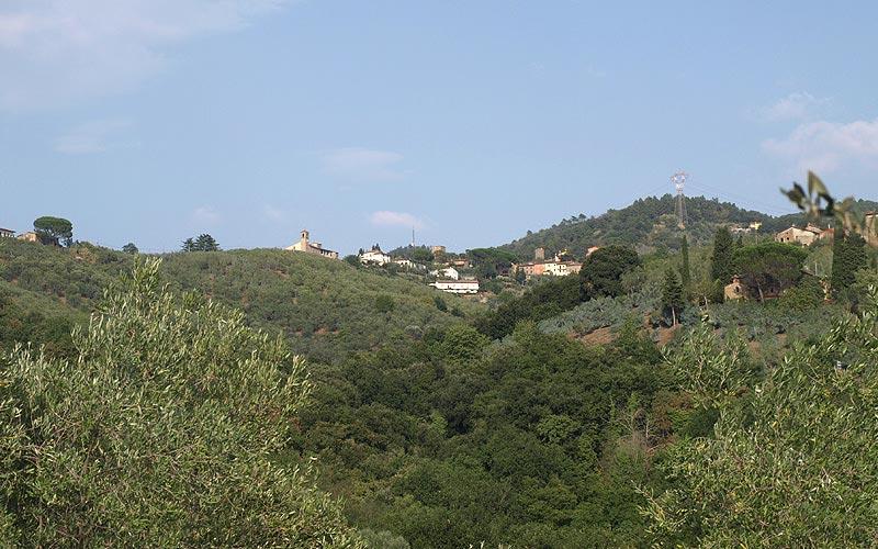 colline del Montalbano